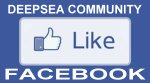 Facebook Deepsea fishing and skipper community link to view and like their facebook page